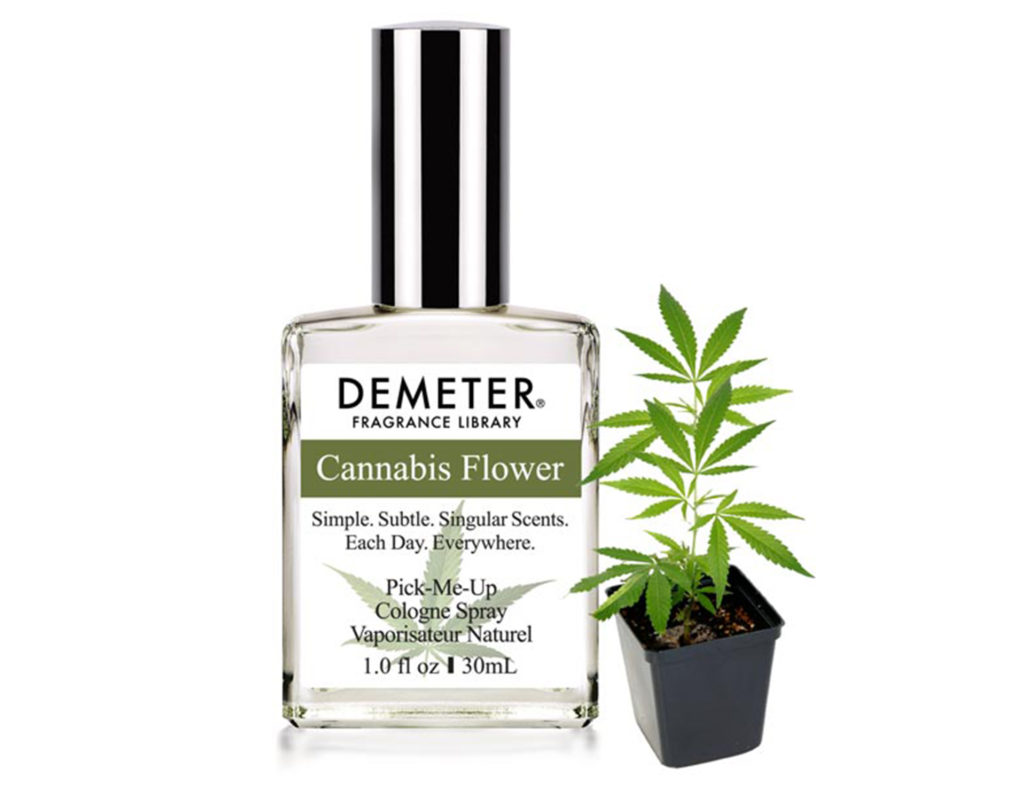 Cannabis flower fragrance the new smoker cannabis flower fragrance buycottarizona Image collections